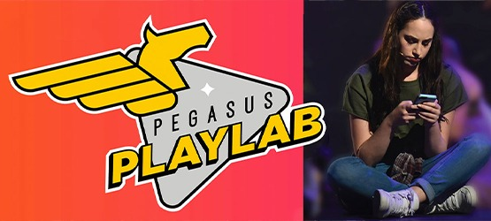 Image for Pegasus PlayLab